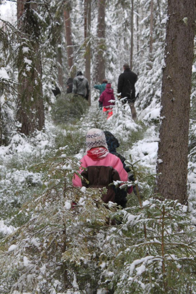 Påväg ut ur skogen Julgransjakt
