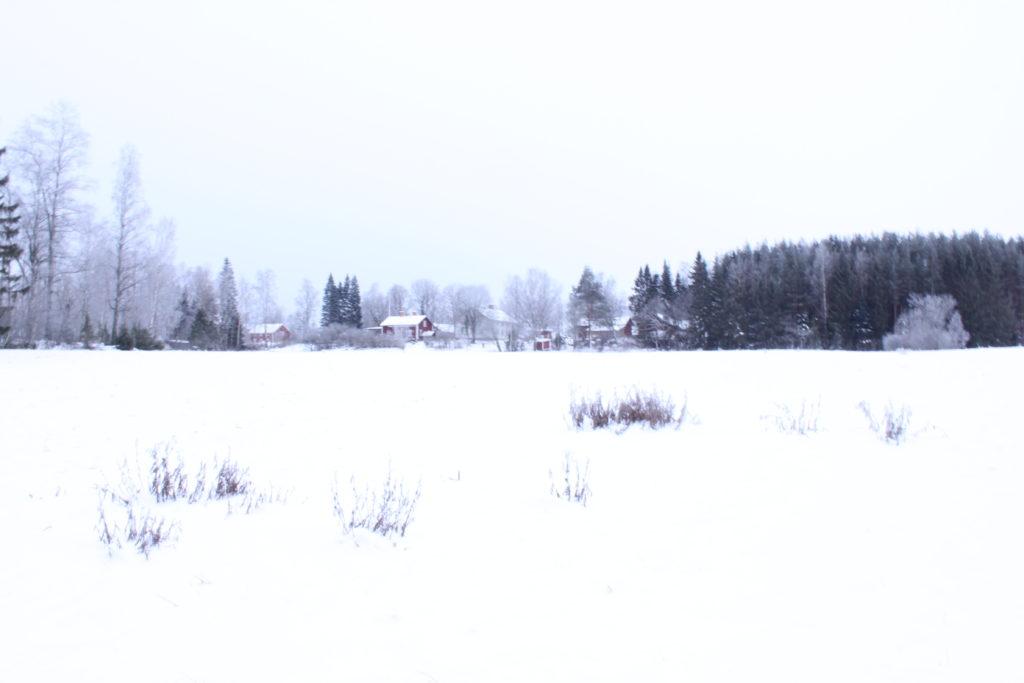 Nygårds i vinterskrud